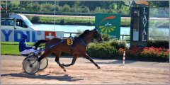 3-YEAR-OLD EUROPEAN CHAMPIONSHIP 2015