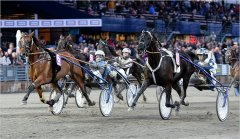 2016 EUROPEAN CHAMPIONSHIP FOR MARES