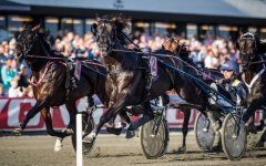 2016 TROTTING MASTERS